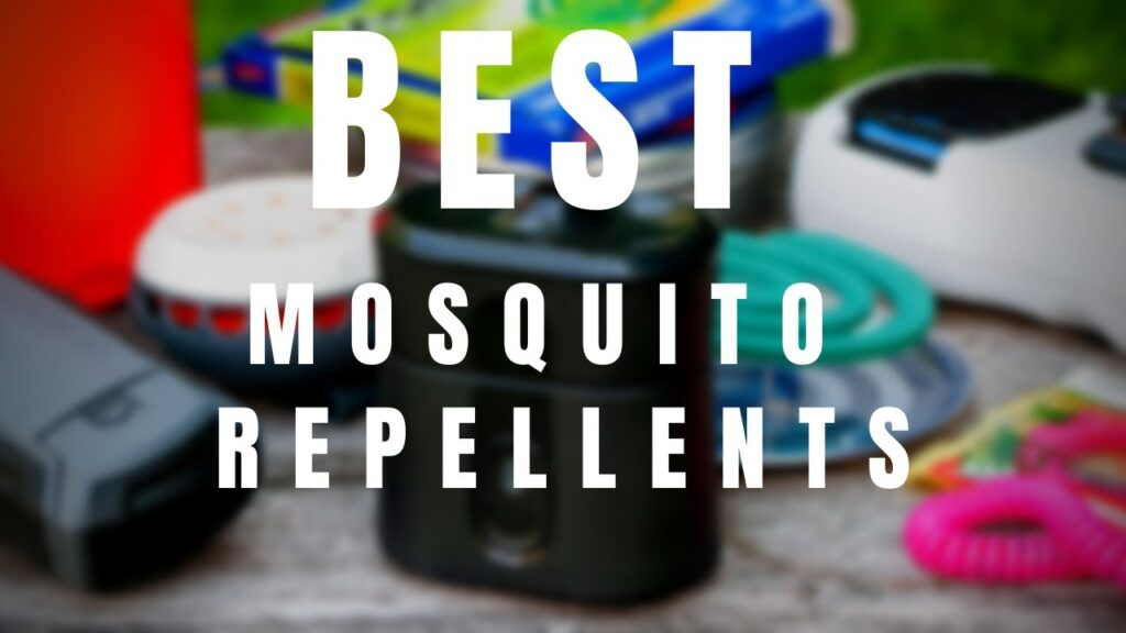 5 Best Mosquito Repellents in 2021