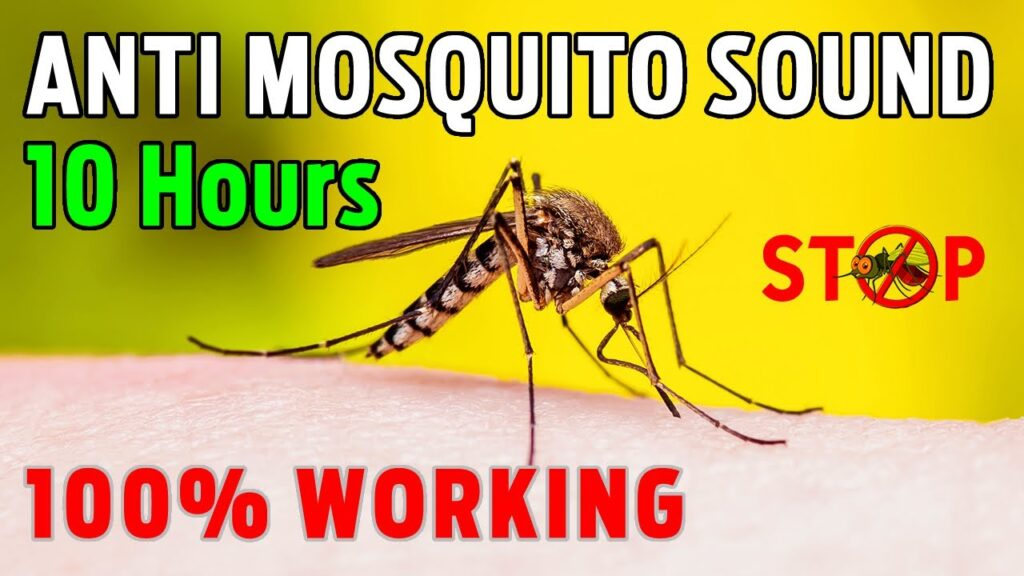 Anti Mosquito Sound ( 10 HOURS ) Mosquito Repellent