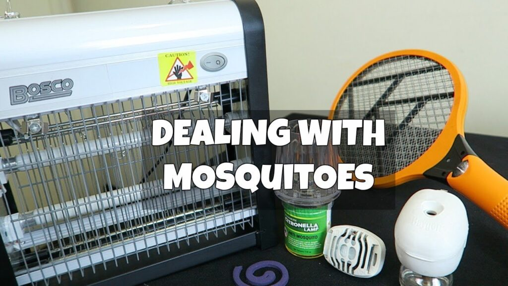 Best way to Kill or Repel Mosquitoes?
