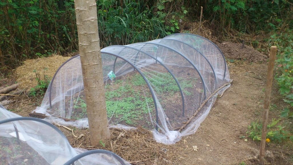 D.I.Y. Make a vegetable garden net from P.E. PIPE (very easy)
