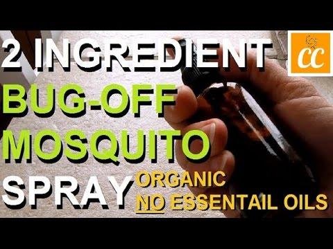 DIY: The Best Mosquito Repellent Spray (Organic & Safe!)