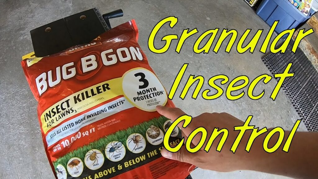 Granular insect control in the lawn
