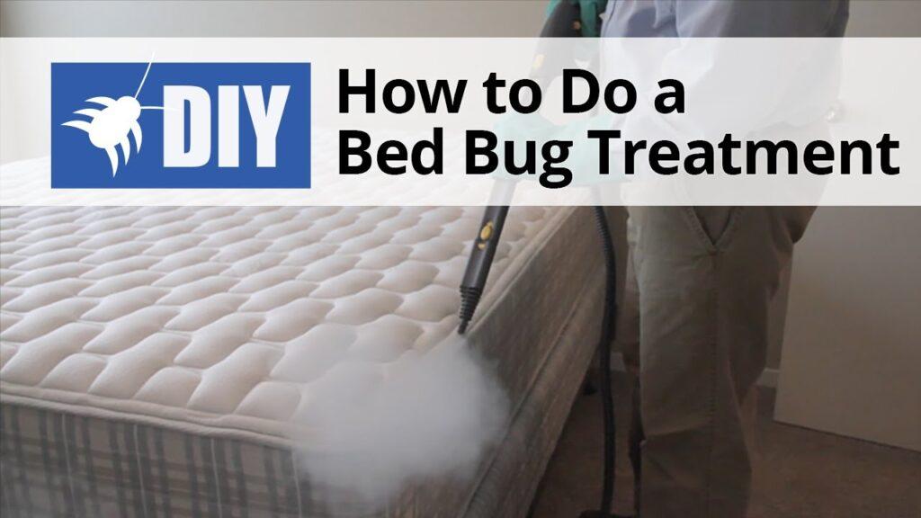 How to Do a Bed Bug Treatment | DoMyOwn.com