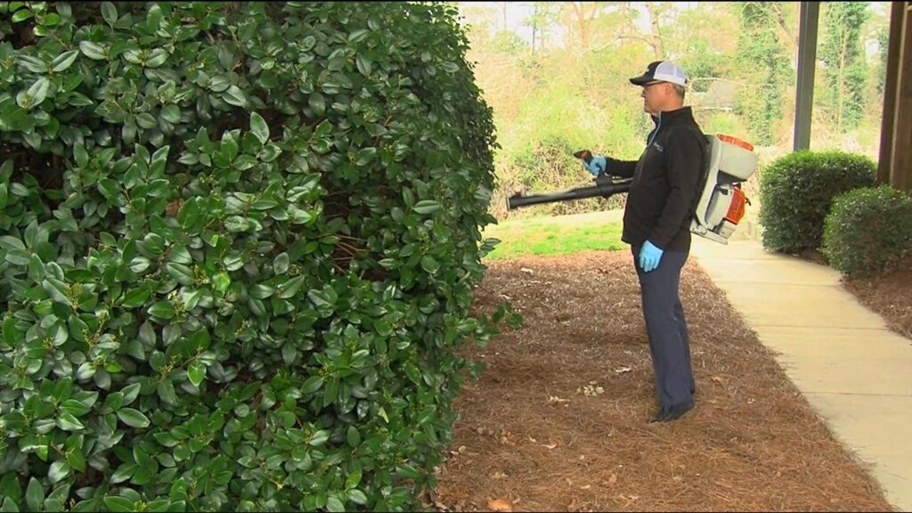 How to Make an Effective Mosquito Control Application