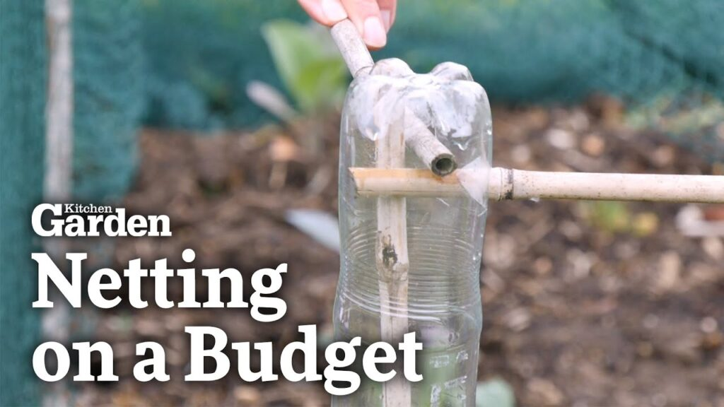 How to do Netting for your Garden on a Budget