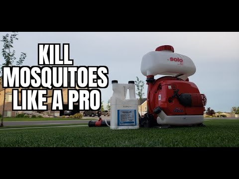 How to kill mosquitoes LIKE A PRO || Get rid of MOSQUITOES around your lawn
