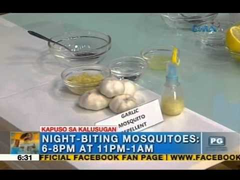 How to make homemade mosquito repellent | Unang Hirit