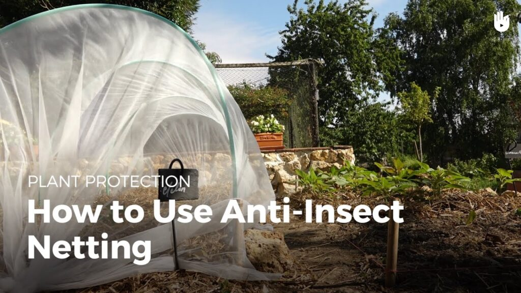 How to use anti-insect netting