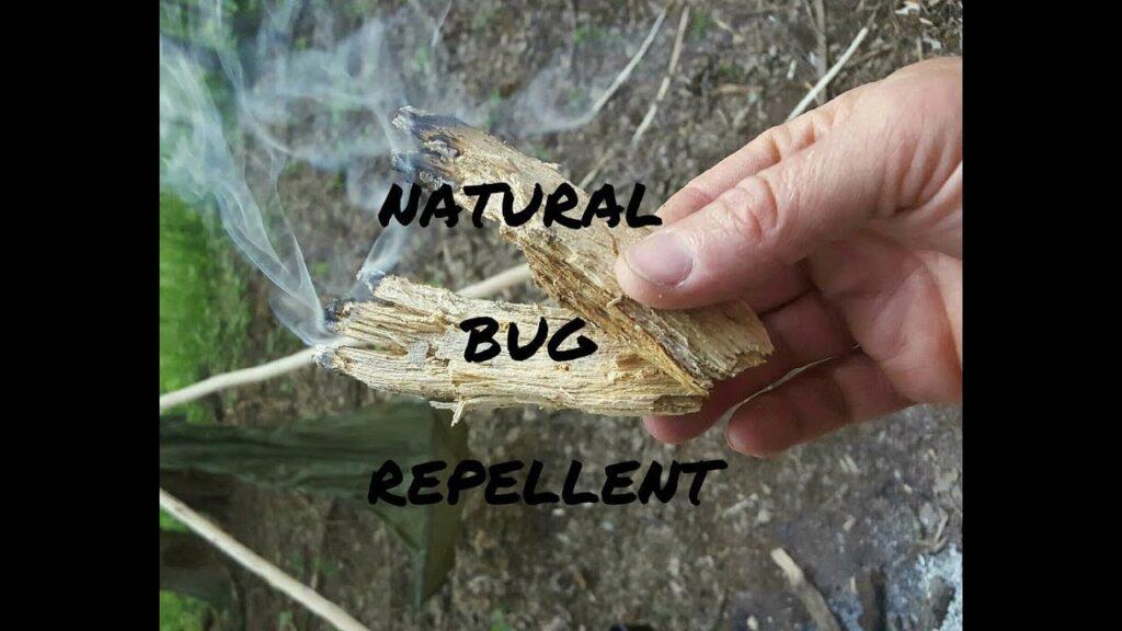 Natural Bug Repellent 1080p